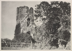 Ruins Near Ormsby Broad